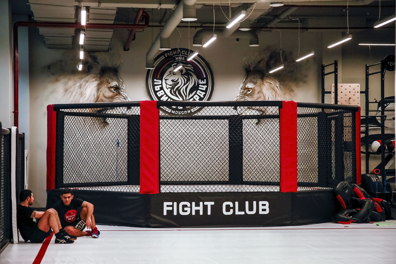 Fight Club Lion Heart -3
